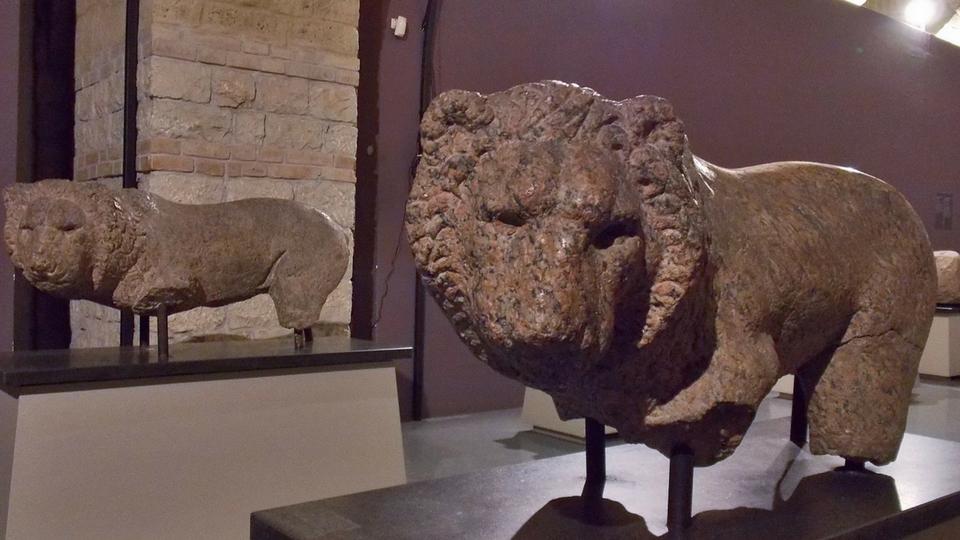 museo Sannio egizi leoni iside visita guidata