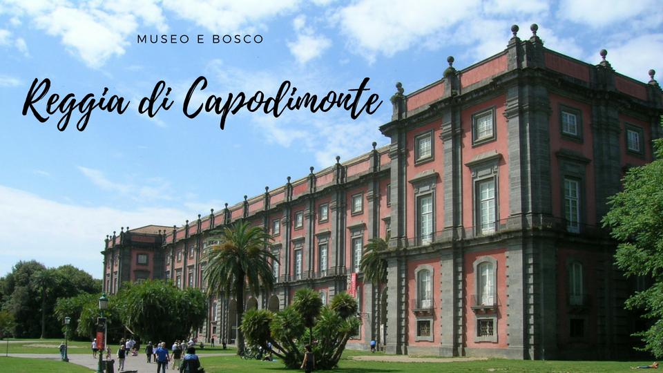 museo bosco Capodimonte